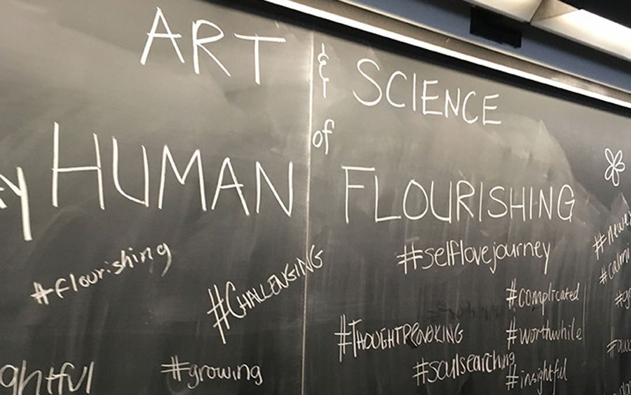 Chalkboard with the words Art and Science of Human Flourishing